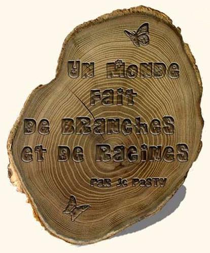 Un monde fait de branches et de racines